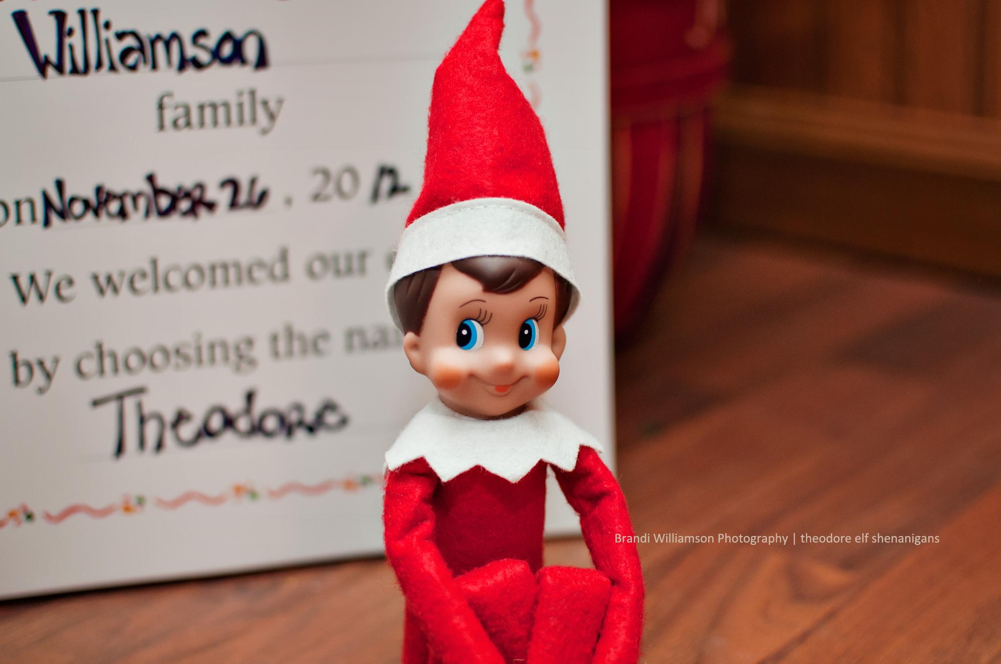 © Brandi Williamson Photography | elf on the shelf