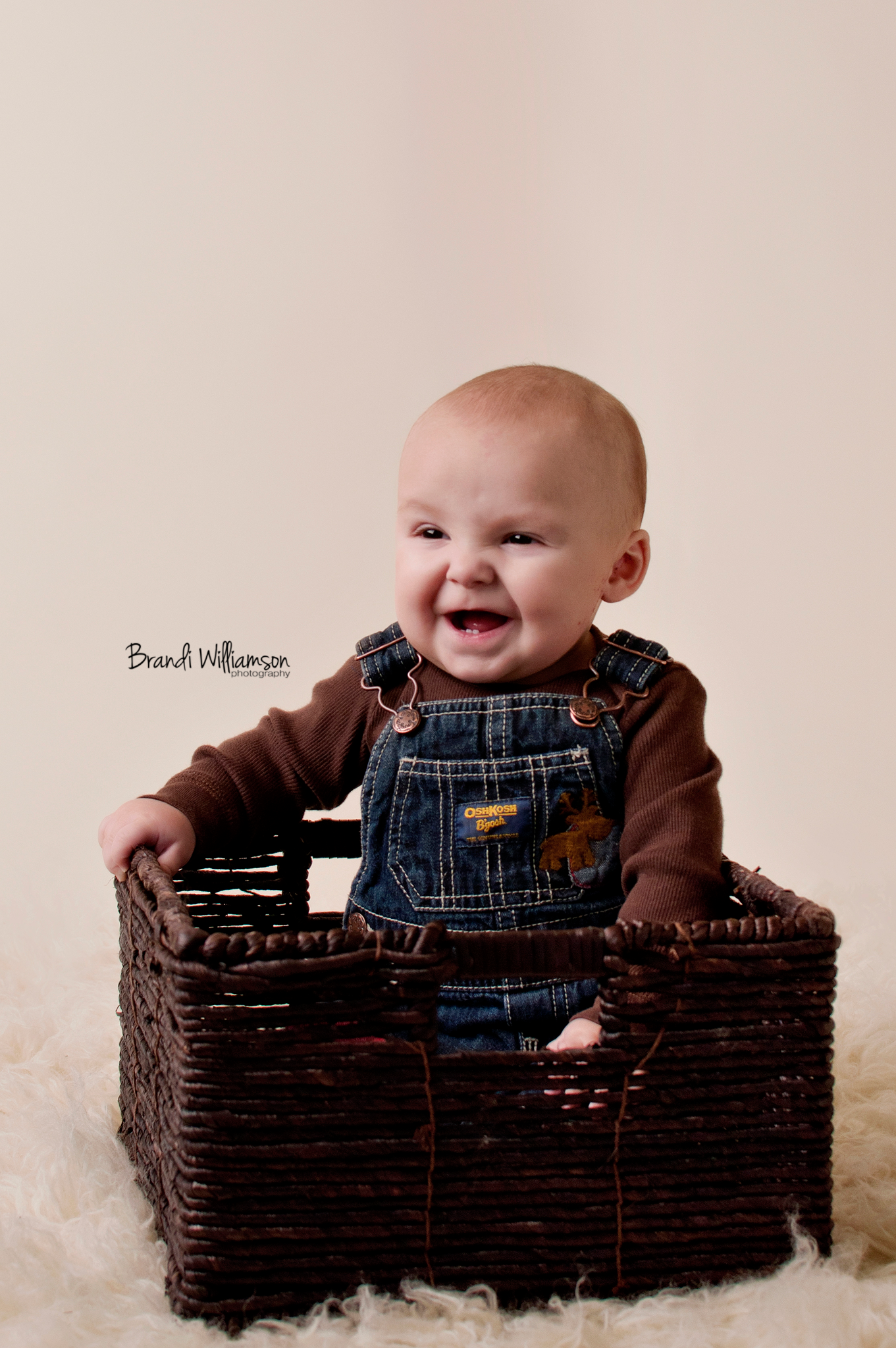 © Brandi Williamson Photography | 6 month old