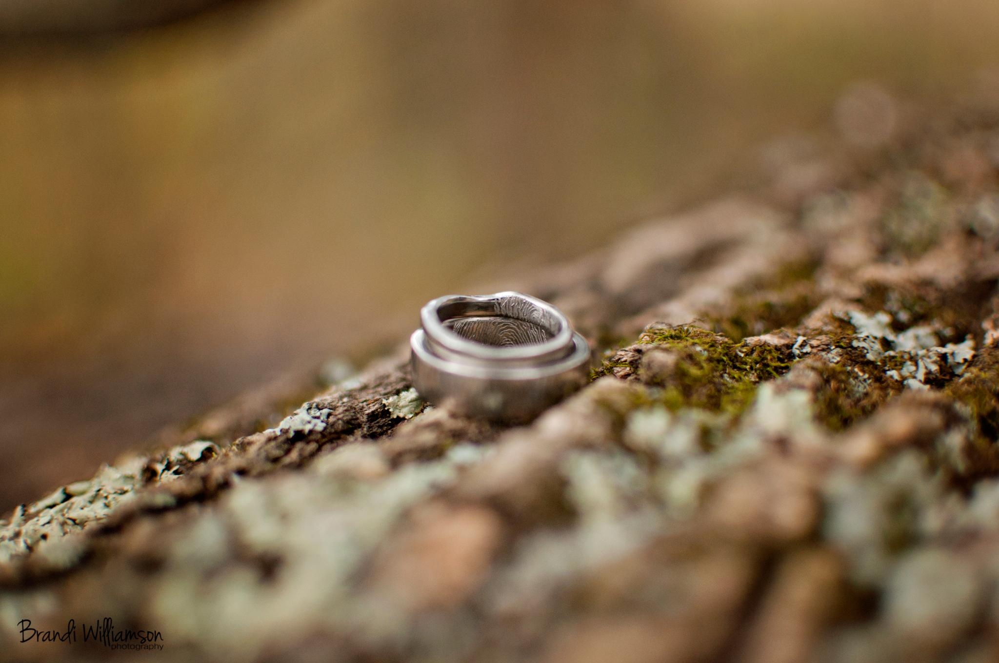 © Brandi Williamson Photography | wedding rings
