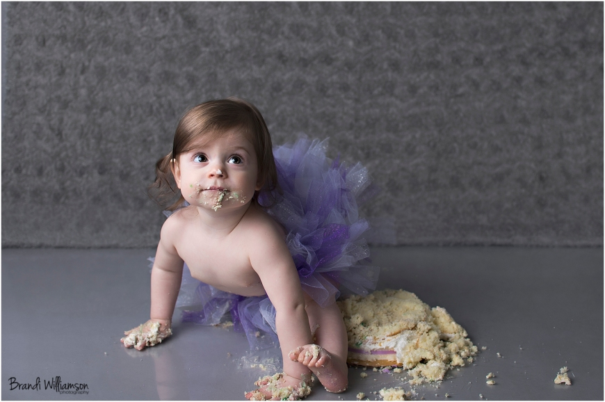 © Brand Williamson Photography | 1 year old | owl smash cake