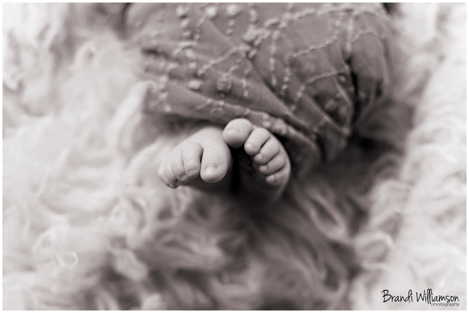 Dover, New Philadelphia OH fresh 48 + newborn photographer | welcome ariana