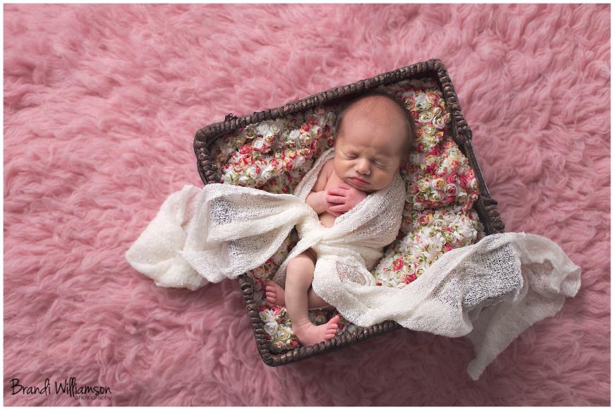 © Brandi Williamson Photography | Dover, New Philadelphia OH newborn + family photographer