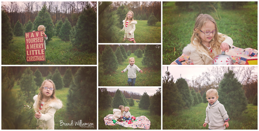 © Brandi Williamson Photography | Dover, New Philadelphia OH baby, child + family photographer | Christmas Tree Mini Sessions
