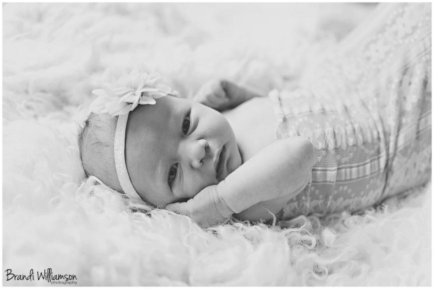 © Brandi Williamson Photography | Dover, New Philadelphia OH newborn photographer | www.brandiwilliamsonphotography.com