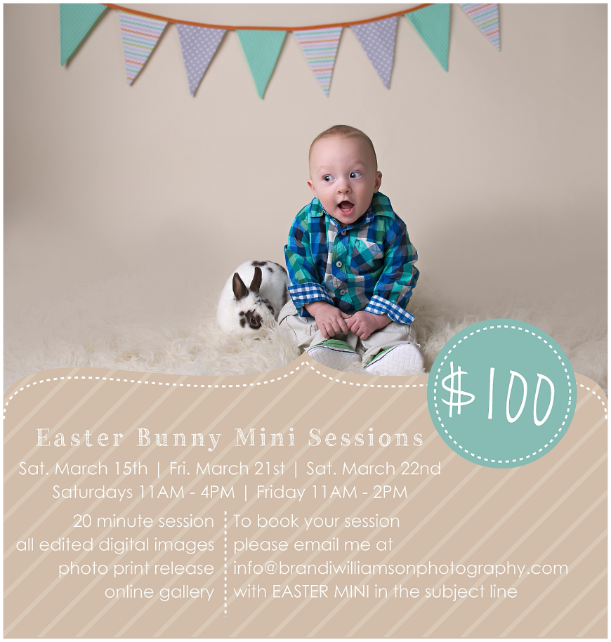 Brandi Williamson Photography Dover New Philadelphia Ohio OH Easter Bunny Mini Session