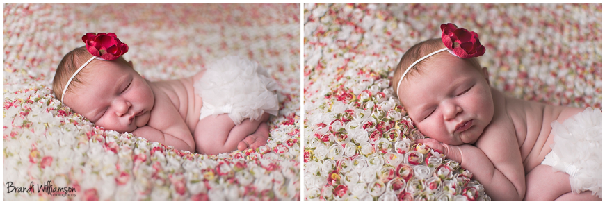 © Brandi Williamson Photography, Dover, New Philadelphia Ohio Newborn + Family Photographer | newborn baby girl