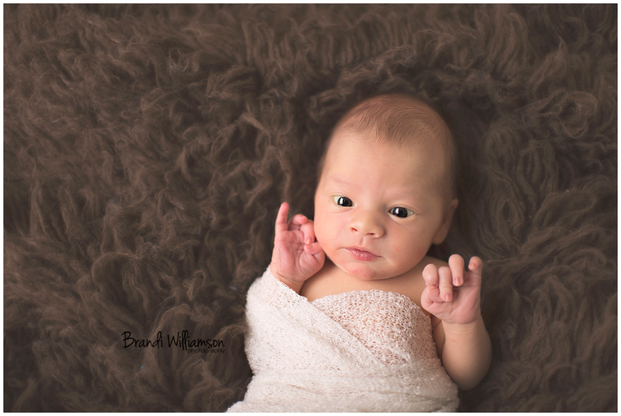 Dover, New Philadelphia Ohio newborn photographer | © Brandi Williamson Photography