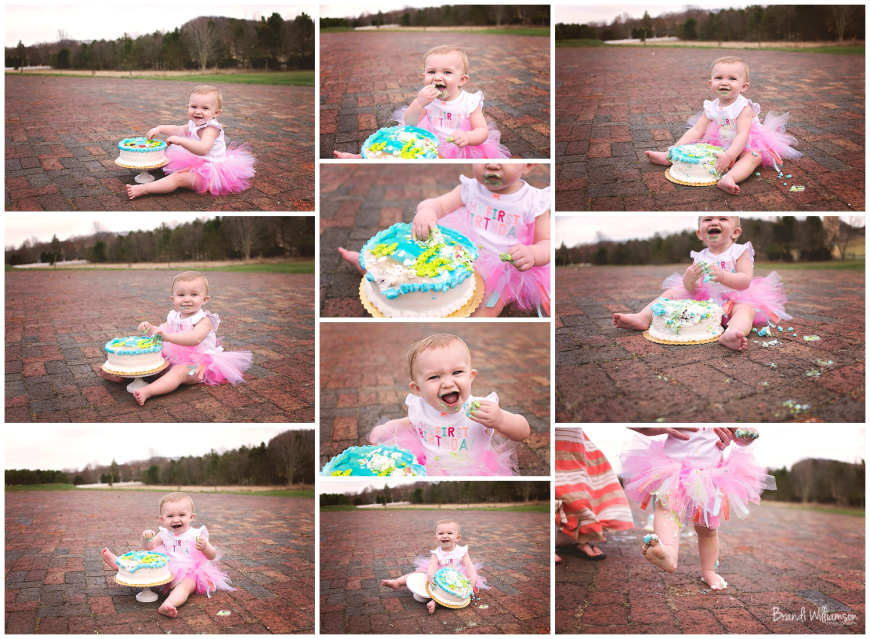 Dover, New Philaelphia Ohio smash cake photographer