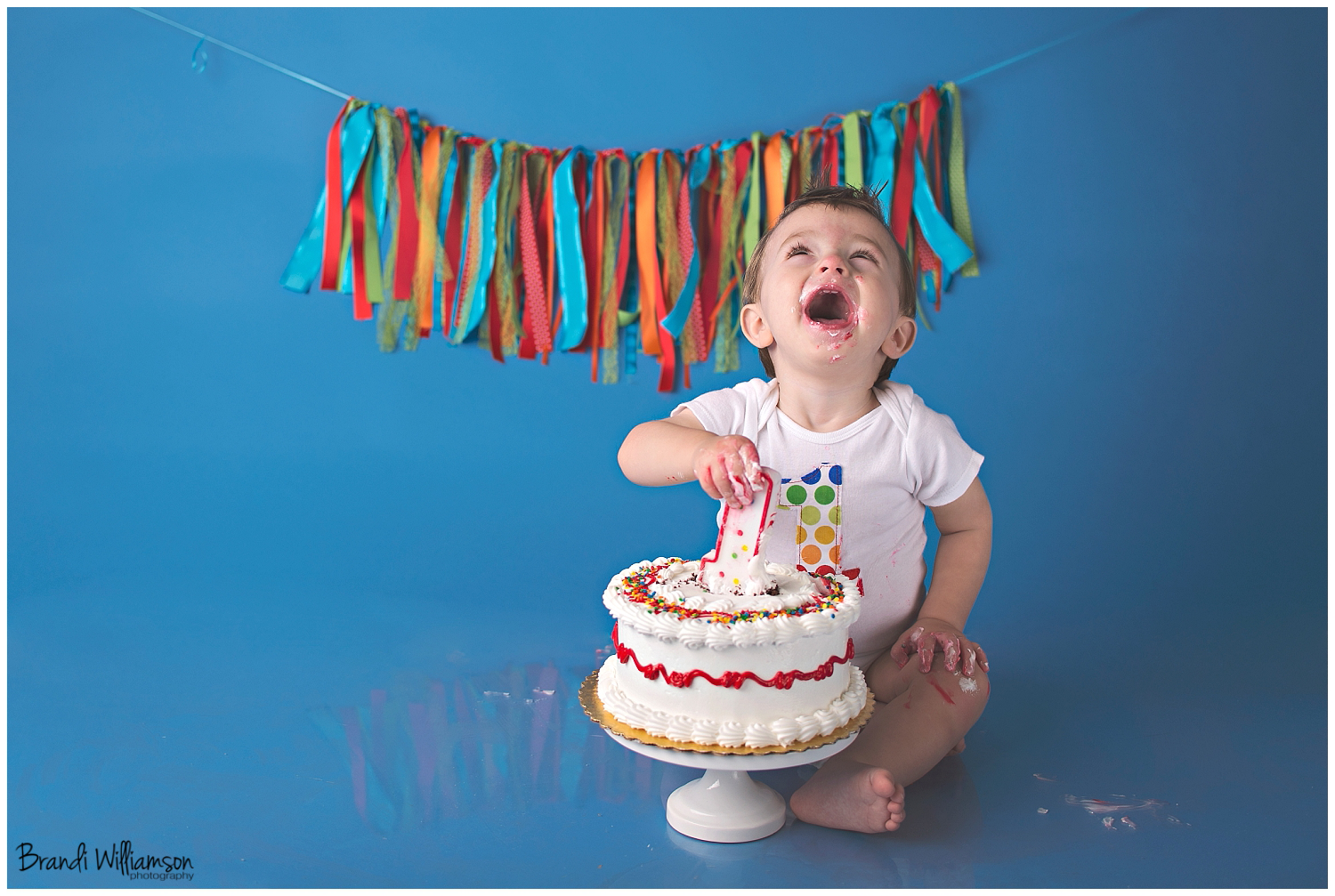 Dover, New Philadelphia OH 1st birthday photographer | quinn loves ...