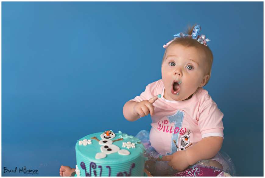 Dover, New Philadelphia Ohio smash cake first birthday photographer, Frozen theme