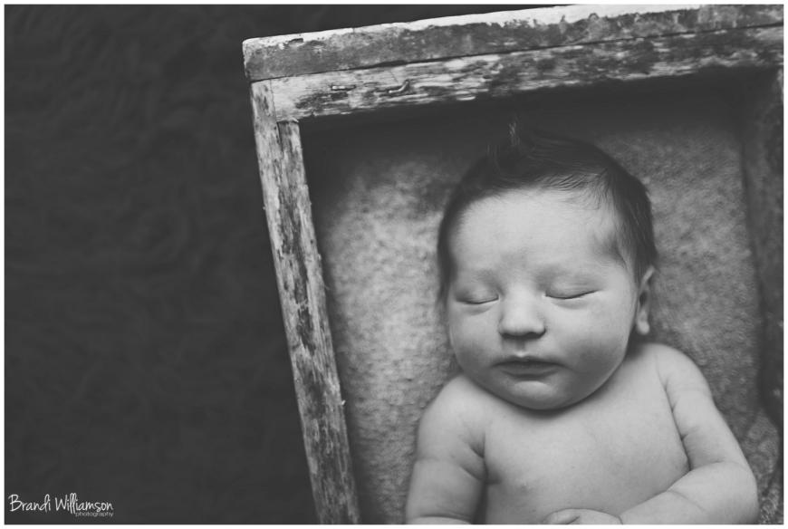 New Philadelphia, Dover, Bolivar, Canton Ohio maternity and newborn photographer   © Brandi Williamson Photography 2014