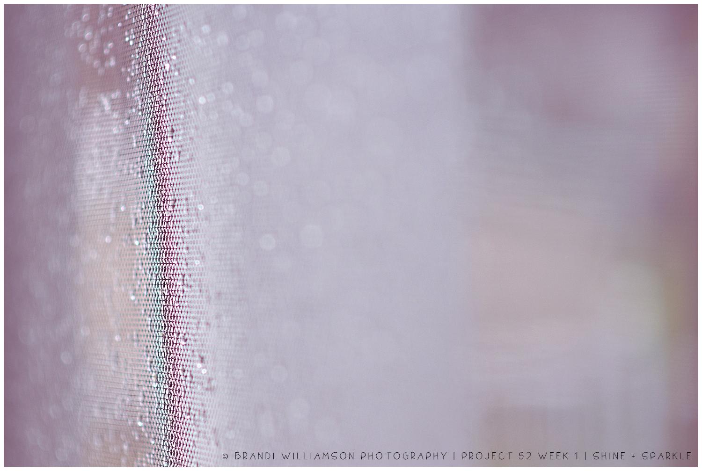 © Brandi Williamson Photography | project 52 | shine + sparkle