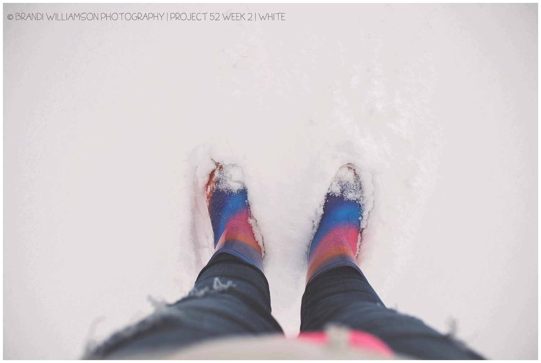 © Brandi Williamson Photography | project 52 | white