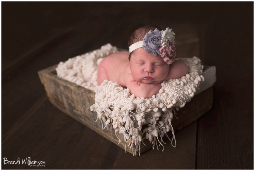 Bolivar Ohio OH newborn and baby photographer 44612 | newborn baby girl | studio session | © Brandi Williamson Photography | www.brandiwilliamsonphotography.com